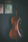 30th Apr 2020 - 30 Days of Cello ~ The End