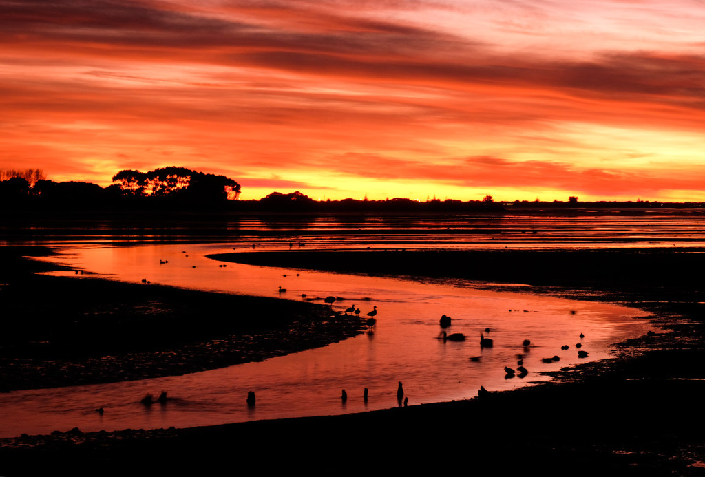River of gold by maureenpp