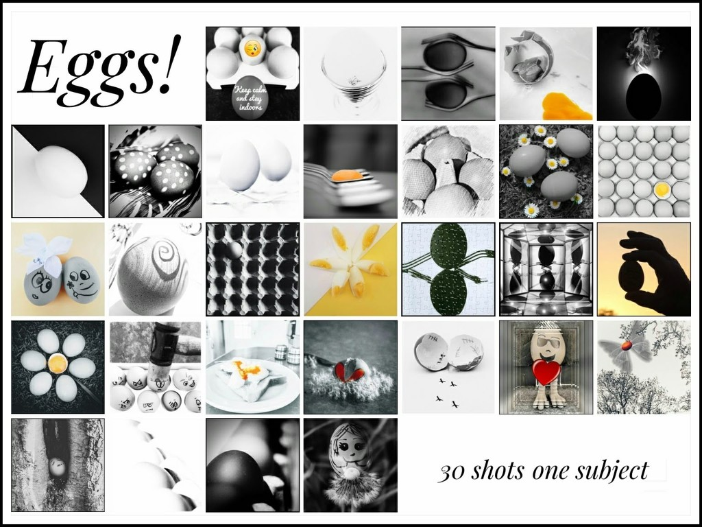 My 30 shots, one subject calendar by lyndamcg