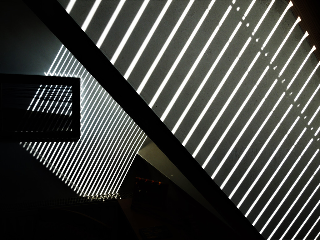 Lines of light by etienne