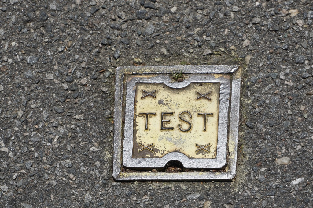 This is a Test by allie912