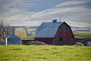 2nd May 2020 - Rural Montana