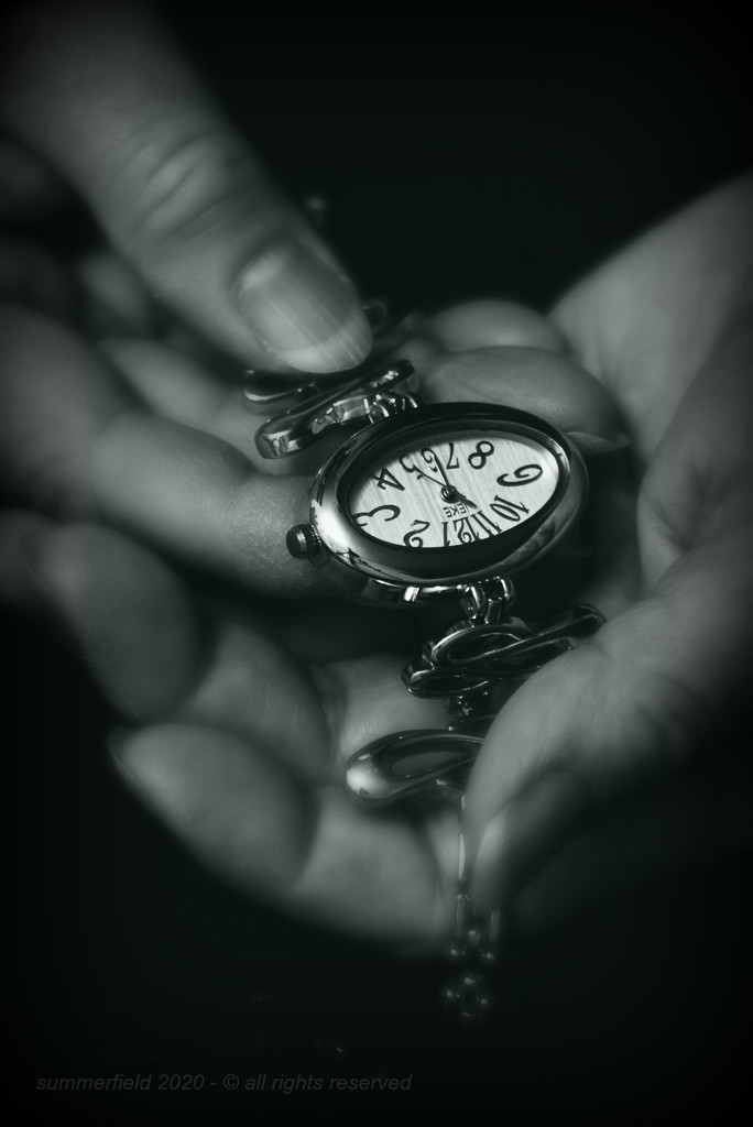 time is precious by summerfield