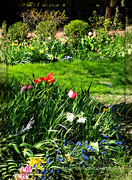 1st May 2020 - the whole world is a garden
