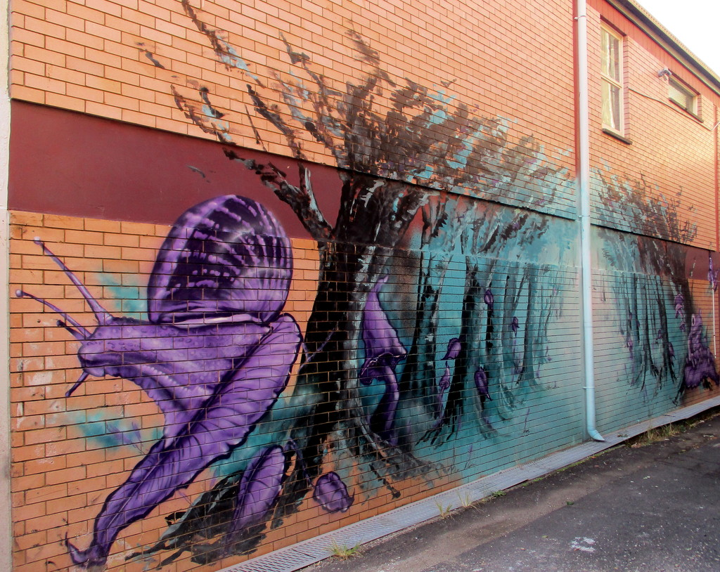Wall art in Nambour by 777margo