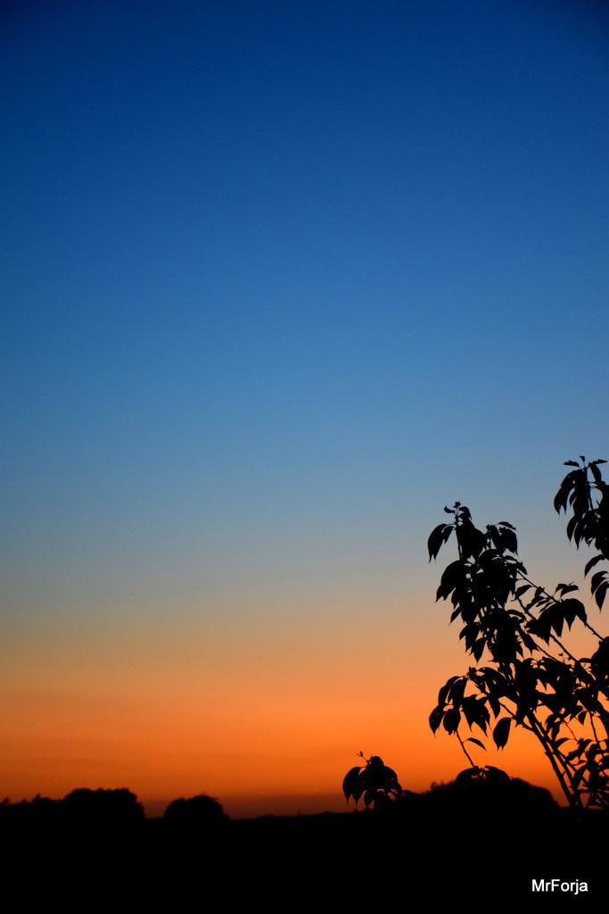 After sundown by mrforja