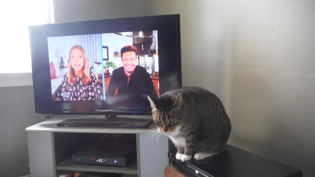 Get Down? I'm Watching My Show! by spanishliz