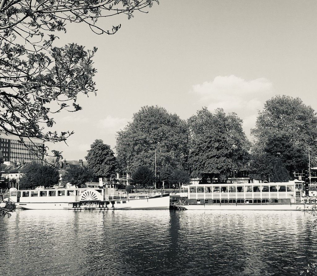 River boats  by ottery