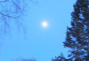 5th May 2020 - Moon
