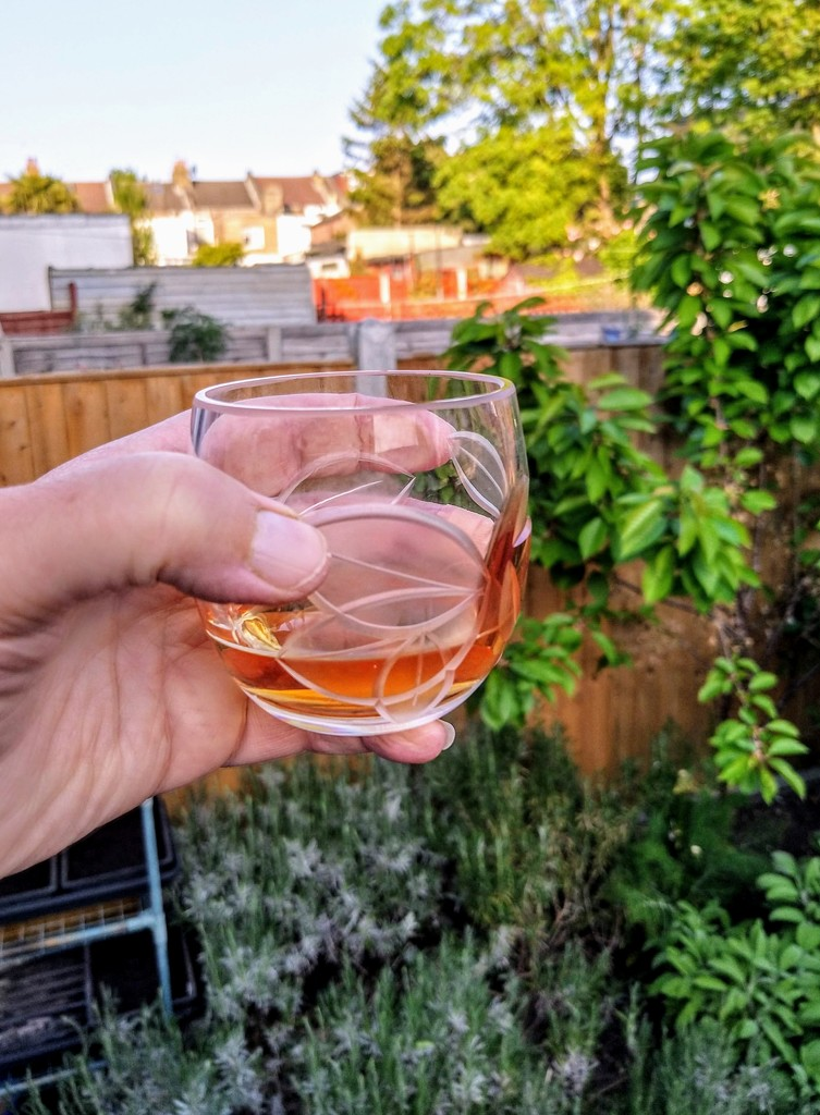 Fence drinks whisky by boxplayer