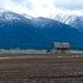 Historic Barn, At A Distance by bjywamer