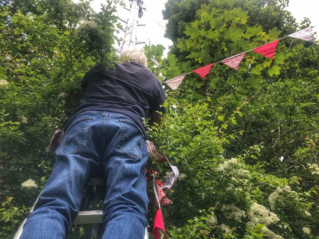 Putting up the bunting. VE Day 2020 by happypat