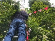 8th May 2020 - Putting up the bunting. VE Day 2020