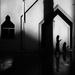 Shadows by stefanotrezzi