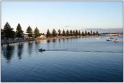 25th Feb 2020 - Pilot Bay