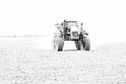 24th Feb 2020 - Tractor in High Key