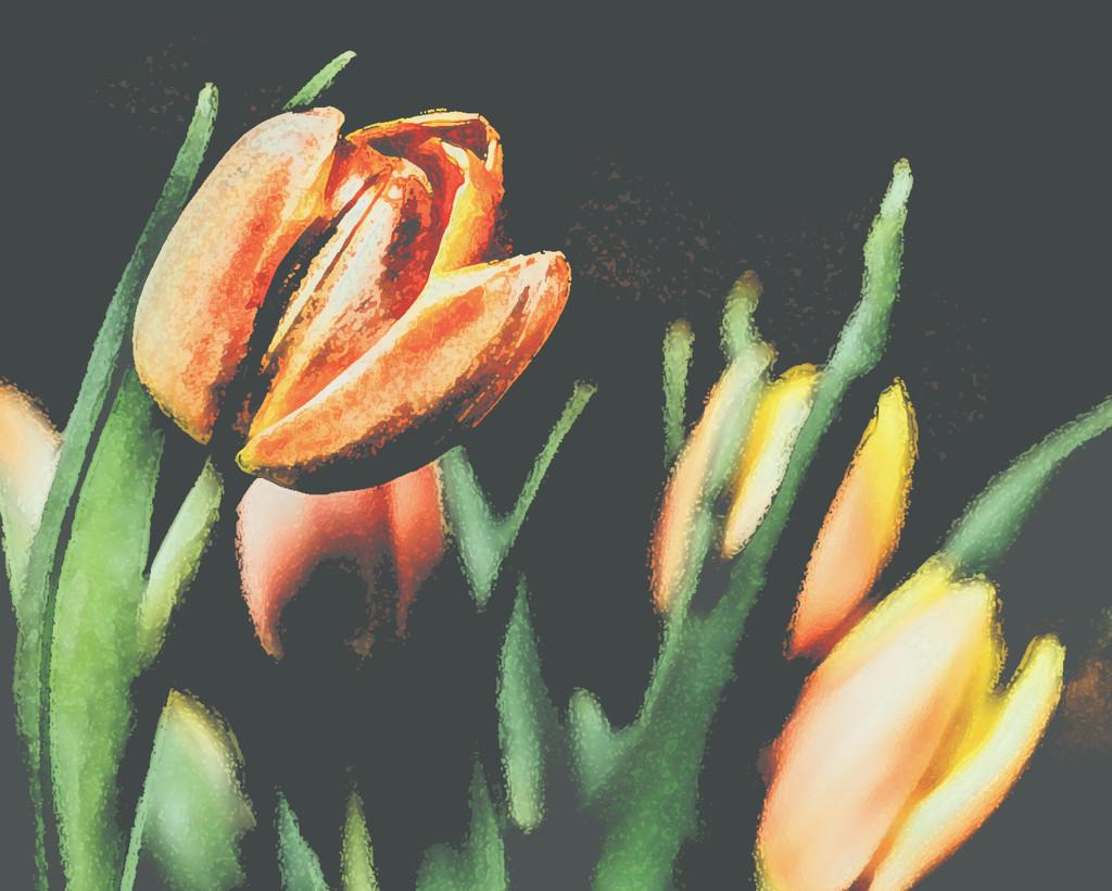 Mom's Day Tulips Edited by mamazuzi