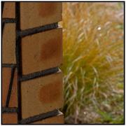 5th May 2020 - Brick & Grass