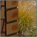 Brick & Grass