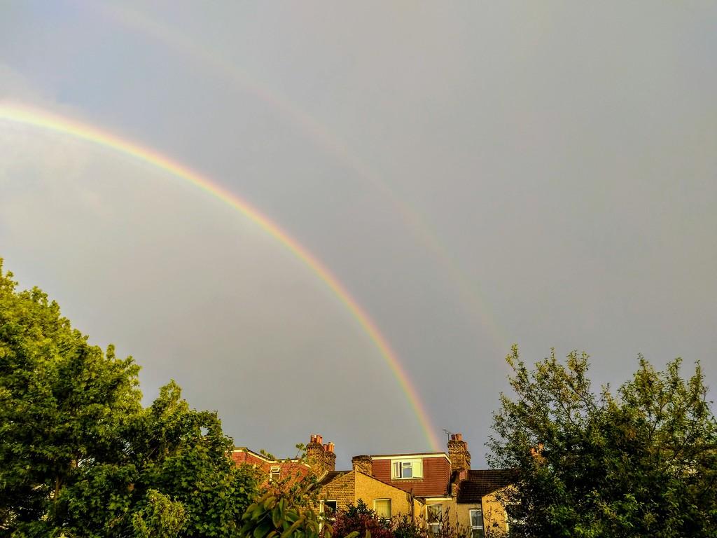 Rainbow by boxplayer