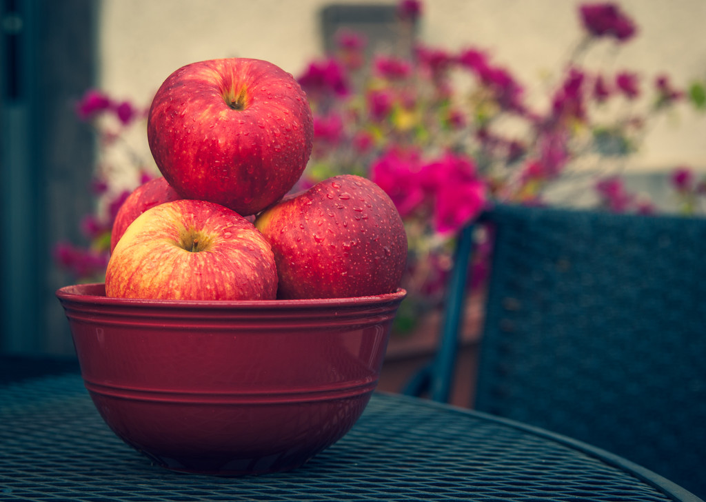 (Day 86) - Join Me For Some Apples by cjphoto