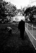 12th May 2020 - Walking the dog