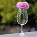A Glass of Rosé (Vintage Helios 44-2 58mm lens) by phil_howcroft