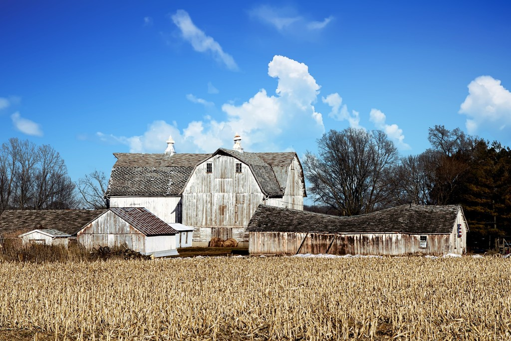 Farm In The Spring by randy23