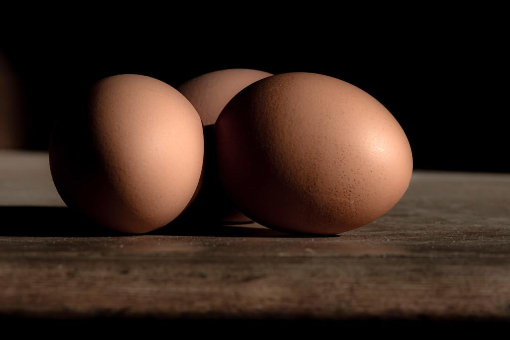 52 Week Challenge - Eggs by farmreporter
