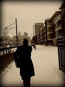 10th Jan 2011 - A Snowy Day...