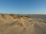 14th May 2020 - Birubi Beach