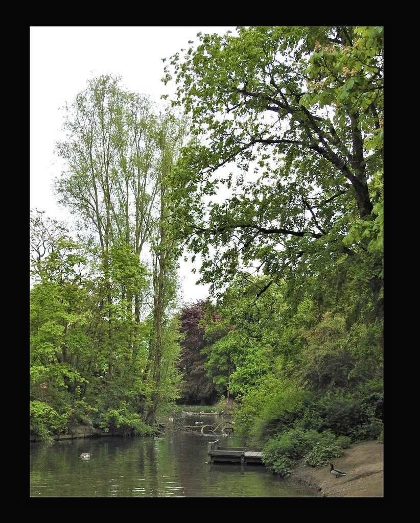 Vernon Park Pond by oldjosh