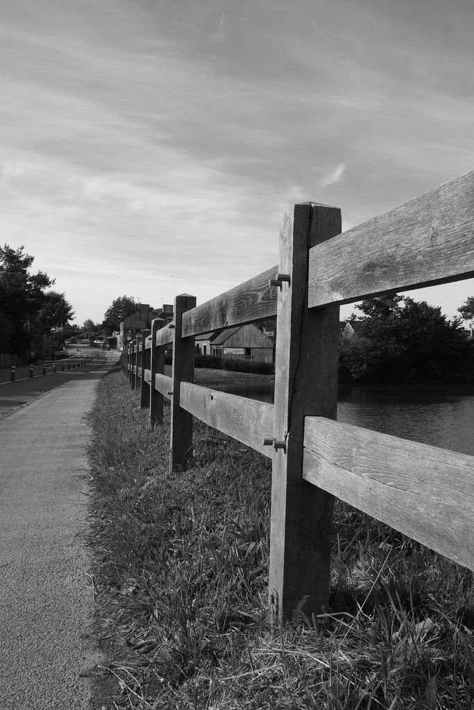 Fence across the digue, Paimpont by s4sayer