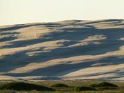 15th May 2020 - Birubi Dunes