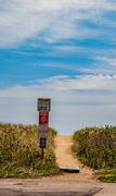 14th May 2020 - Beach Path