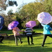 Brolly girls out of lock down by gilbertwood