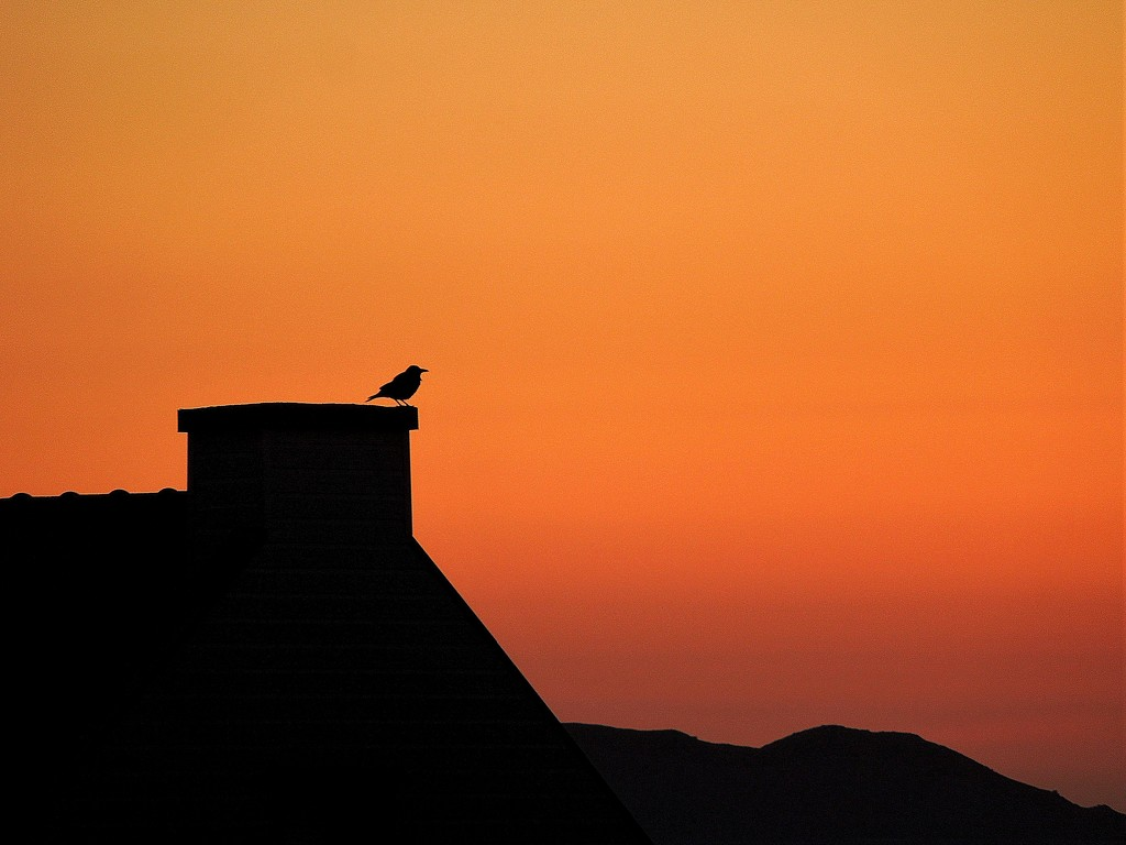 Watching sunset by etienne