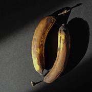 10th May 2020 - Bananas