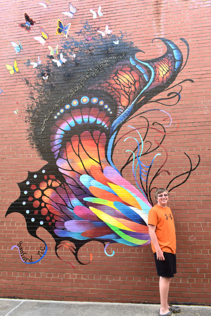 Fly, butterfly, fly! by homeschoolmom