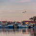 Early morning Fishing Harbour by seacreature
