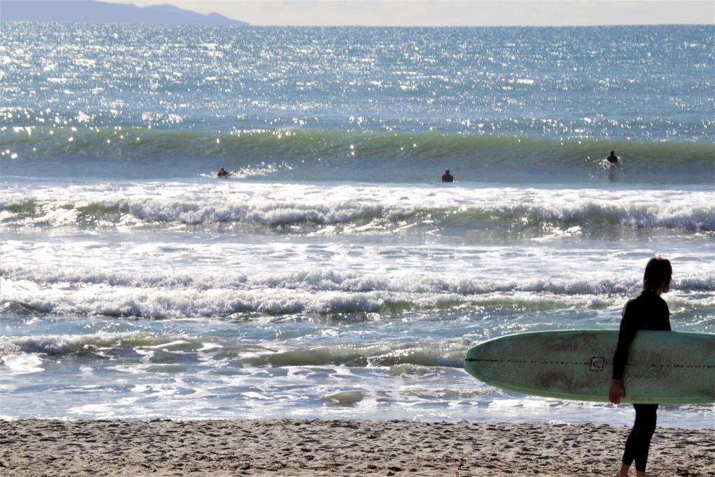 Surfs Up by sandradavies