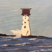 The Smalls Lighthouse (painting)