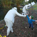 Mt Cootha botanic gardens reopened