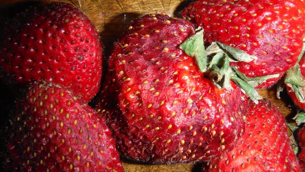 Pick Strawberries Day by spanishliz
