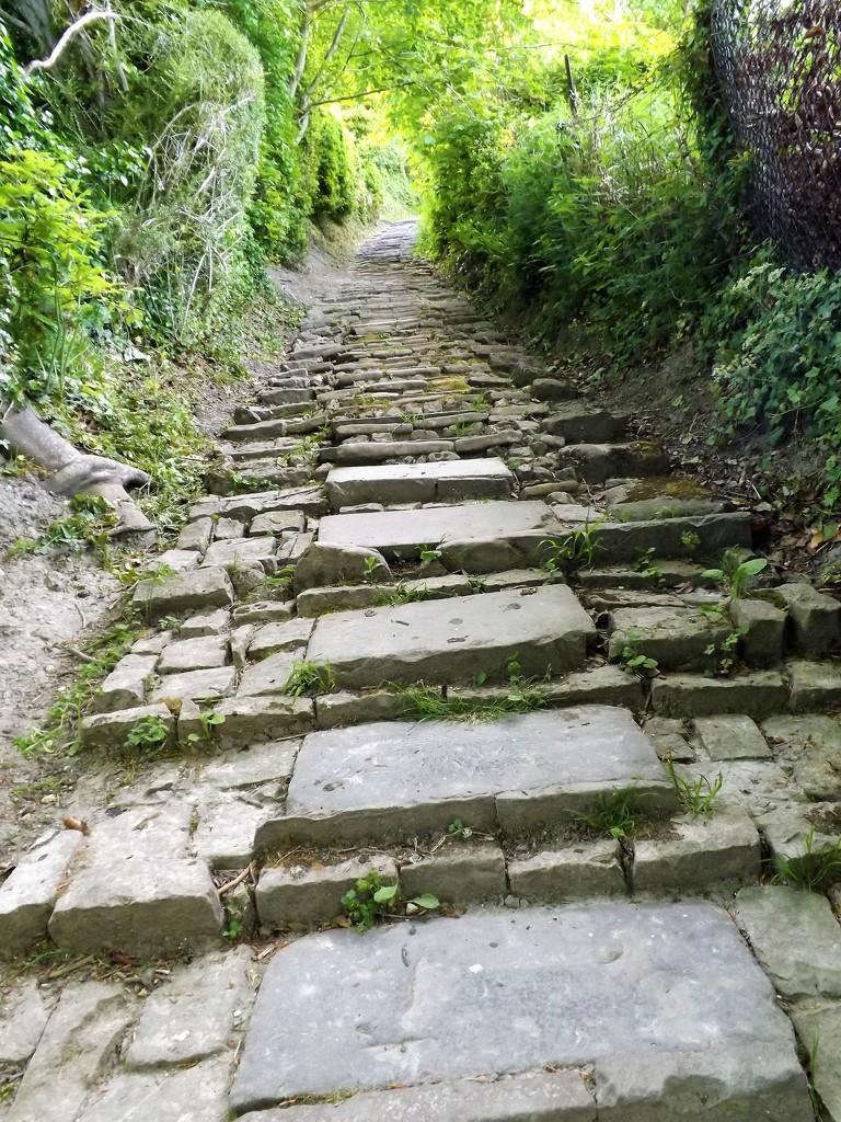 Stony Steps by ajisaac