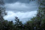21st May 2020 - In Between Heavy Rainstorms...
