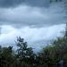 In Between Heavy Rainstorms...