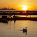 Port Credit Marina Sunrise