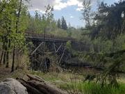 21st May 2020 - Trestle Bridge