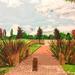 City park (painting)